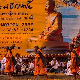 Thai Monks Walking On a Bed Of Flowers. by John Greene - People Street & Candids ( temple, flower petals, monk, wat thammagui, thailand, thai, john greene, flowers, pathum thani )