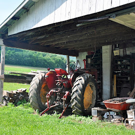 Tractor by Sandy Newfield - Transportation Other ( countryside, farm, red, pennsylvania, tractor )