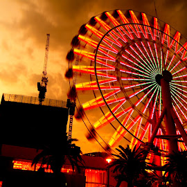 Ferries Wheel during Sunset in Kobe, Japan by Cristiano Michael - City,  Street & Park  Amusement Parks