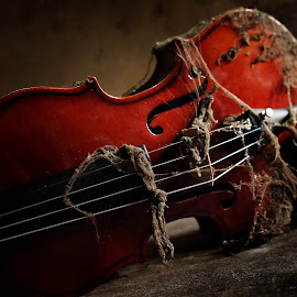 biola 1 by Indra Prihantoro - Artistic Objects Musical Instruments ( music,  )