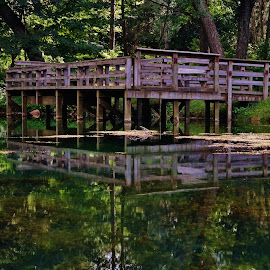 Fishing Hole by Lori Kulik - Buildings & Architecture Bridges & Suspended Structures ( reflection, fishing hole, waterscape, deck, pond )