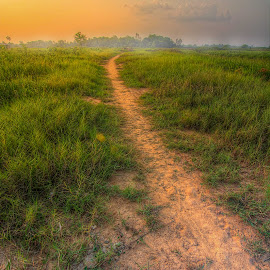 Lebak Bagan by Mursyid Alfa - Landscapes Prairies, Meadows & Fields
