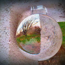 Through the Looking Ball by Cecilia Sterling - Artistic Objects Glass ( winter, meditation ball, glass, cinder block, garden )