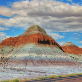 Petrified Forest Hill by Fred Herring - Landscapes Deserts