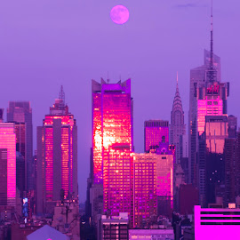 NYC in the Pink! by Linda Antenucci - Buildings & Architecture Public & Historical ( the mood factory, mood, lighting, sassy, pink, colored, colorful, scenic, artificial, lights, scents, senses, hot pink, confident, fun, mood factory  )
