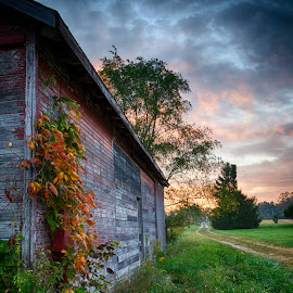 September Morning by Jim Crotty - Landscapes Prairies, Meadows & Fields ( calm, farm, peaceful, ohio, summer, landscape, rural )