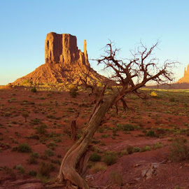 Monument Valley by Chris Jarrell - Landscapes Deserts