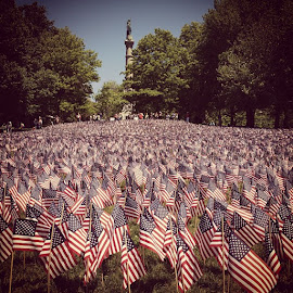 Memorial Day flag garden by Sarah Beth - City,  Street & Park  City Parks