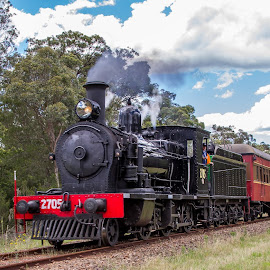 Still Steaming.... by Bob Howard - Transportation Trains ( steam train, australia, train, nsw, transportation, landscape, steam )
