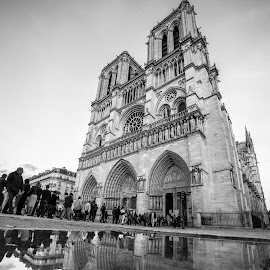 Notre Dame by Cosmin Stahie - Buildings & Architecture Public & Historical ( water, de, paris, reflection, dame, church, notre dame, black and white, ultra, wide, angle, notre )