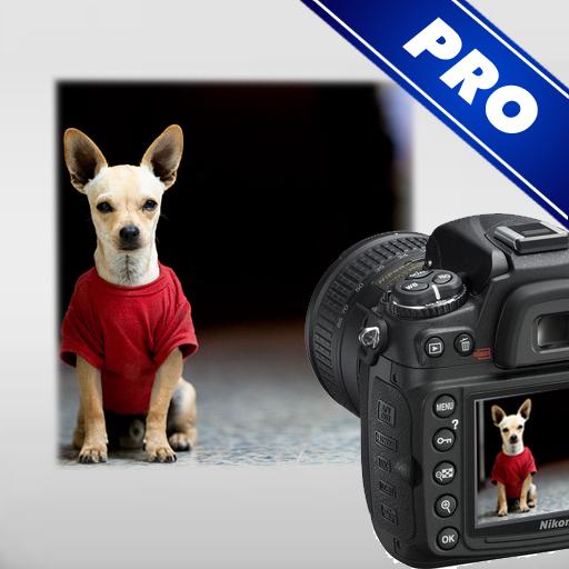 DSLR Camera - Photo Guide 攝影 App LOGO-APP開箱王