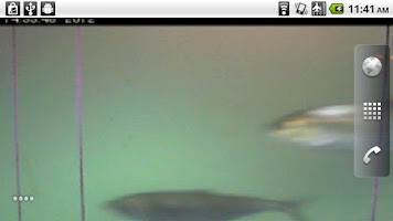 Screenshot of Webcam Wallpaper