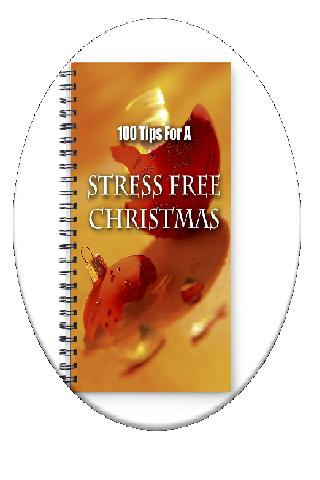 100 Tips Stress Free Holidays