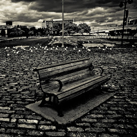 Old Bench by Bruno Gallant - City,  Street & Park  City Parks ( clouds, montreal, quebec, bench, dramatic )