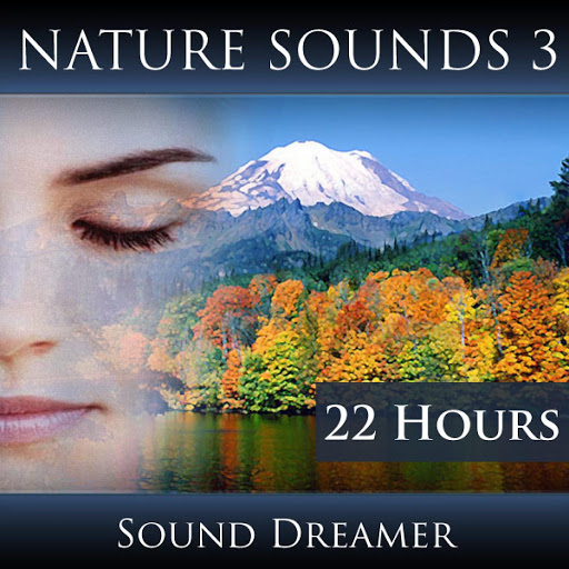 Free Nature Sounds - Listen to Relaxing mp3 Nature Sounds