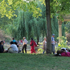 Luxembourg Gardens, Easter Week by Tina Stevens - People Street & Candids ( europe, grass, beautiful, togetherness, columns, fun, relaxing, leaves, people, sun, luxembourg, city, paris, nature, trees, france, sunshine, natural, garden, crowd, humanity, society )