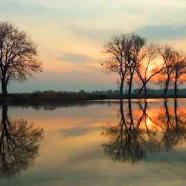First spring sunrise.. by Željko Salai - Landscapes Sunsets & Sunrises