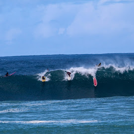 Pipeline hawhii by Kaisy Chevalier - Sports & Fitness Surfing