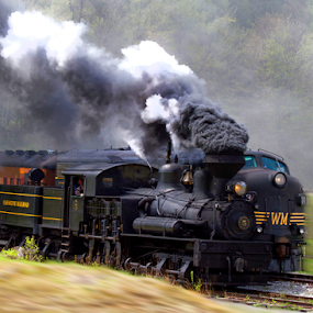 The Steam Engine Wins! by Donna Neal - Transportation Trains