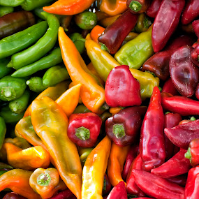 Lots of Peppers by Kelvin Watkins - Food & Drink Ingredients ( peppers, red, bright, food, green, spicy, yellow )