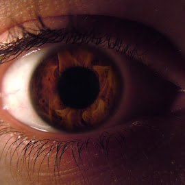 Eye by Casey Nugent - People Body Parts