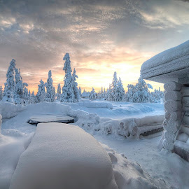 Lapland by J M - Landscapes Sunsets & Sunrises