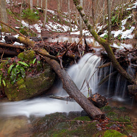 by Siniša Almaši - Landscapes Waterscapes ( water, stream, wood, croatia, forest, landscape, winter, nature, tree, cold, color, snow, river )