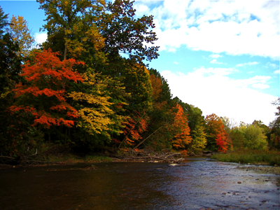 fall river colors.jpg