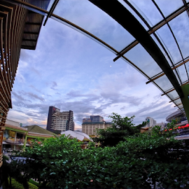 Marriot's by Ferdinand Ludo - Buildings & Architecture Office Buildings & Hotels ( blue hour, marriot hotel, ayala center cebu )