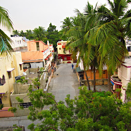 view from terrace by Venkat Krish - Nature Up Close Trees & Bushes ( #terrace #trees #road #buildings #cloudy )