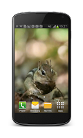 Screenshot of Little Chipmunk 3D Wallpaper