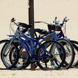 The Chained Gang by Rhonda Mullen - Transportation Bicycles ( 07-03-2014 trip arount lake michigan with mia )