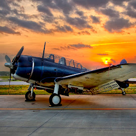 Dauntless at Dawn by Jon Berry - Transportation Airplanes ( airport, aviation, flight, dawn, warbird, dauntless, airplane, prop, sunrise, fighter )