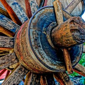 Nut by Barbara Brock - Artistic Objects Other Objects ( wood nut, wooden wheel, rustic wagon, wood wagon, wood bolt, wood wagon wheel,  )