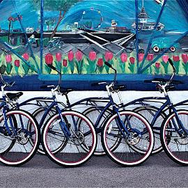 Bikes by Richard Timothy Pyo - Transportation Bicycles
