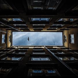 by Kittikun Wankeundee - Buildings & Architecture Office Buildings & Hotels