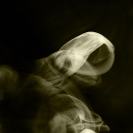 ghost2 by Jim Oakes - Abstract Patterns ( black and white, indoors, day, sunlight )