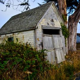 Arcata Bottoms by Jeanne Knoch - Buildings & Architecture Decaying & Abandoned