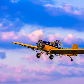Crop Dusting at Sunrise by Aaron Priest - Transportation Airplanes ( crop dusting, maine, airplane, agriculture, s-2r, morning, flying, plane, n5557x, sunrise, presque isle, ayres corporation, cropduster, purple, yellow, color )