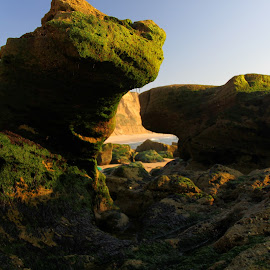 The monster by Gil Reis - Nature Up Close Rock & Stone ( beaches, nature, sea, stone, portugal, rocks )