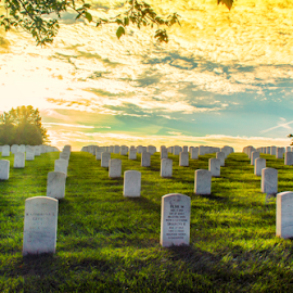 Headstones Basking In Sunlight by Bill Tiepelman - City,  Street & Park  Cemeteries ( warm, graves, cemetery, grave, vibrant, sunlight, sun, missouri, blue sky, green trees, jefferson barracks, jefferson barracks national cemetery, sunny, warmth, summer, trees )