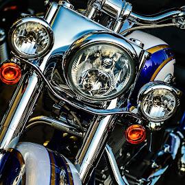 harley davidson by Ariel Jerard V. Arias II - Transportation Motorcycles ( harley davidson )