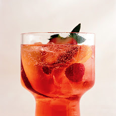 Negroni Punch