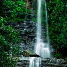 Waterfall by Syed Waseem - Landscapes Waterscapes ( water, waterfall, india, rock, forest, landscape )