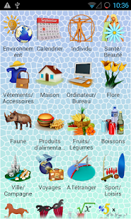 PixWord Russian for French - screenshot
