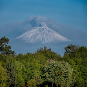 Popocatepetl, lagoon and trees by Cristobal Garciaferro Rubio - City,  Street & Park  City Parks ( laggon, volcano, lake trees water, smoking volcano )