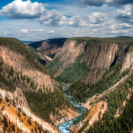 Grand Canyon of Yellowstone by Matt Reynolds - Landscapes Travel