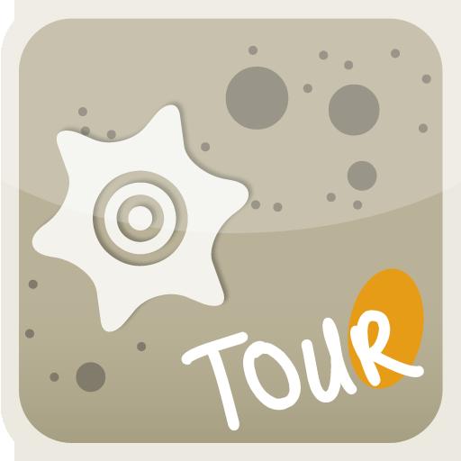 Vannes Tour