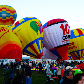 ABQ Balloon Fesita  by Dan Dusek - Transportation Other (  )
