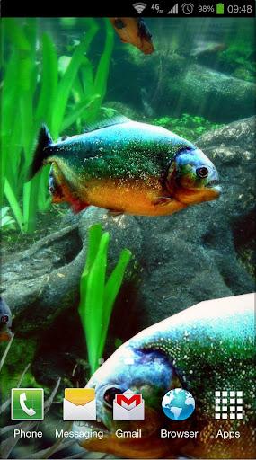Piranha Aquarium 3D lwp - screenshot